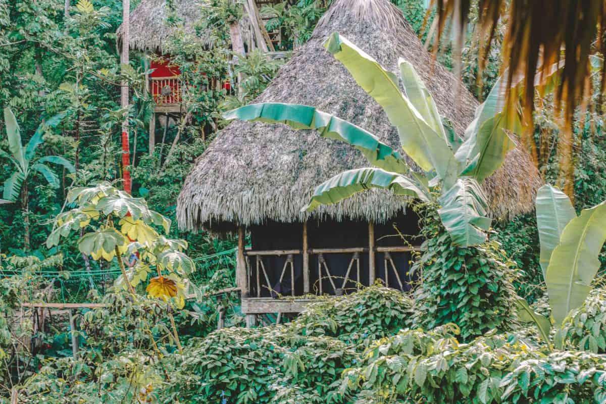 10 Reasons to Choose a Treehouse over a Resort in the Dominican Republic