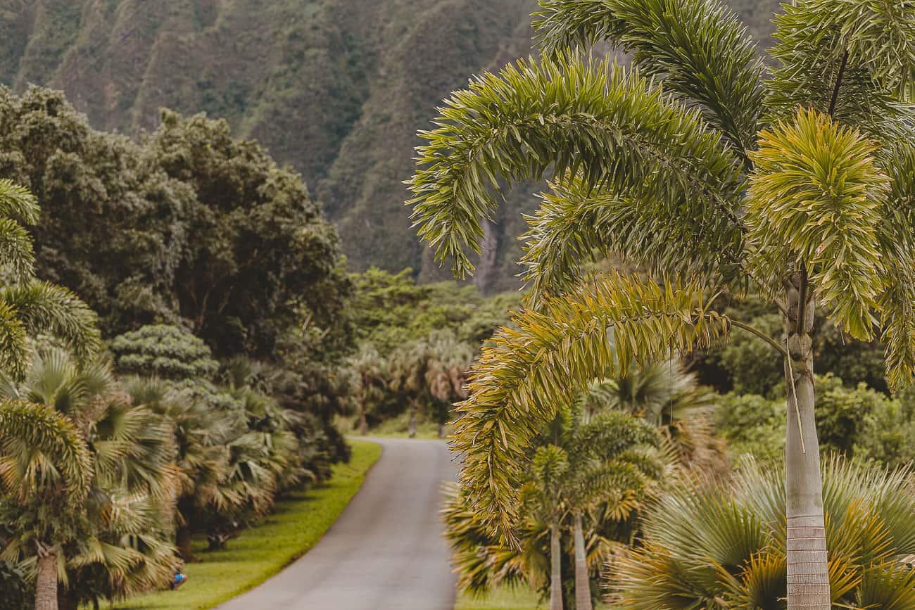 Things to Do on Oahu Hawaii - Grace J. Silla