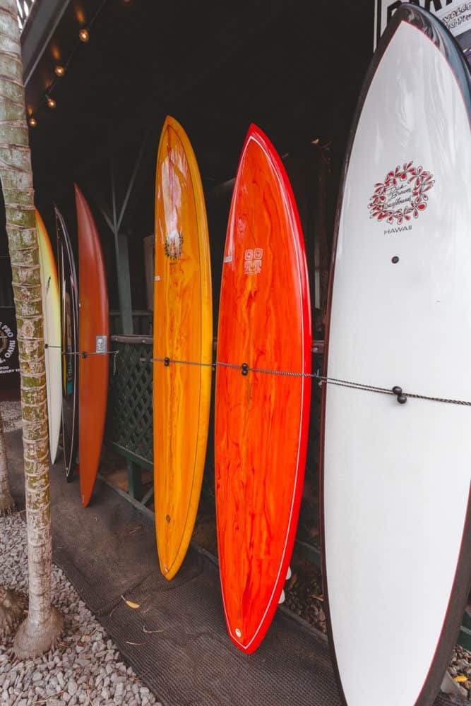 colorful surfboards all lined up