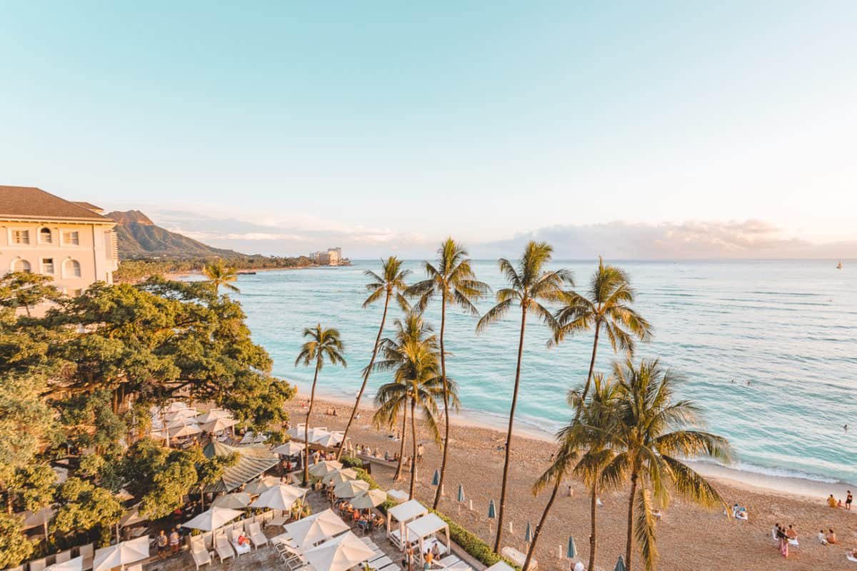 view from an Oahu hotel overlooking the beach and palm trees
