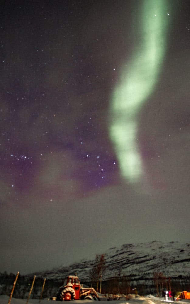 Things to Know Before You Book Your Tromso Northern Lights Tour