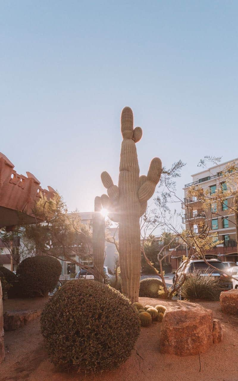 5 day itinerary for visiting phoenix Arizona