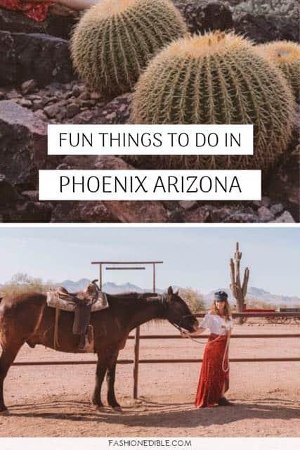 activities in Phoenix | what to do in Phoenix Arizona | Phoenix attractions | things to do in Phoenix | Phoenix AZ things to do | fun things to do in Phoenix