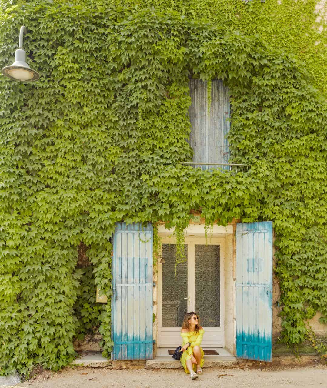 ivy covered wall with a blue window