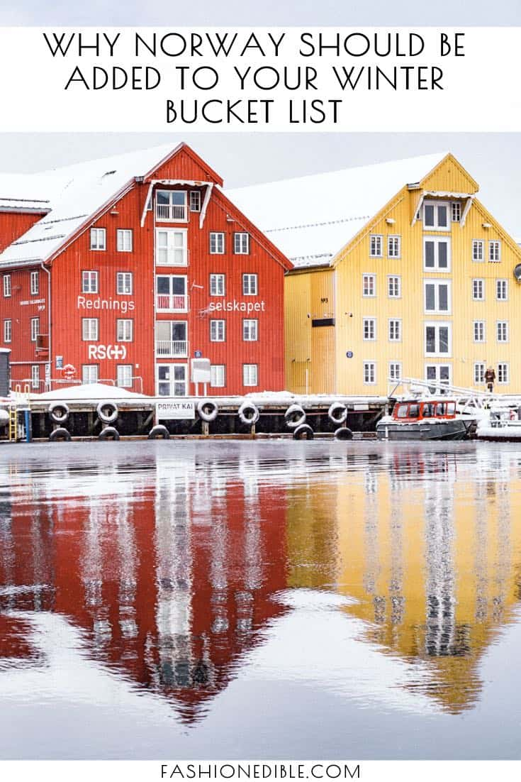 things to do in Tromso Norway | what to do in Tromso | why you should visit Norway during winter |